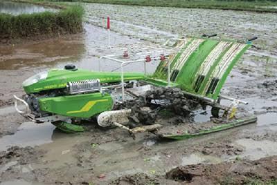 Alsintan Rice Transplanter Efektif Pacu Produksi Padi Agribisnis
